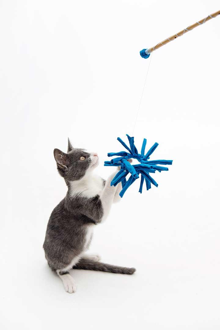 Przerób nakretkę nazabawkę zfrędzlami dla kota