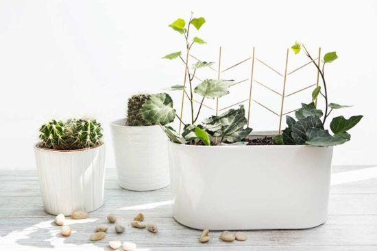 Zrób podpórkę dla kwiatów z wykałaczek i patyczków do szaszłyków