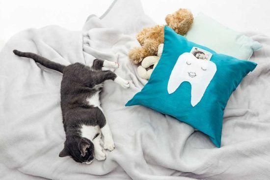 Ozdób poduszkę kieszonką na prezent od Wróżki Zębuszki
