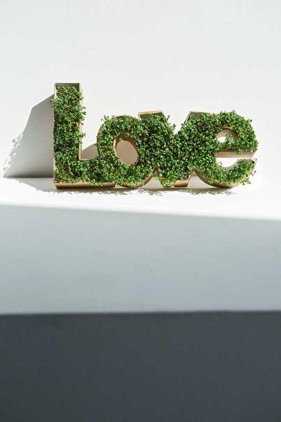 Żyj pięknie - Zrób rzeżuchowe love