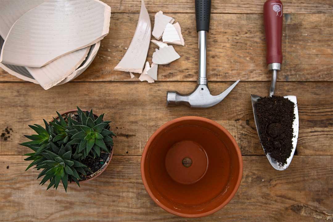 Żyj pięknie - Zamień rozbitą donicę nadrenaż dla roślin