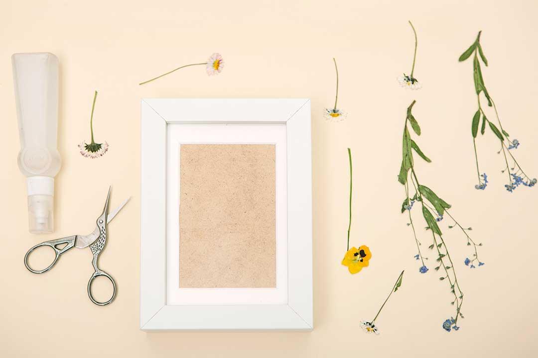 Żyj pięknie - Zrób ramkę zsuszonymi roślinami