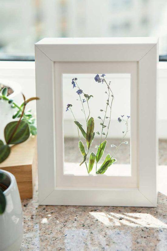 Żyj pięknie - Zrób ramkę z suszonymi roślinami